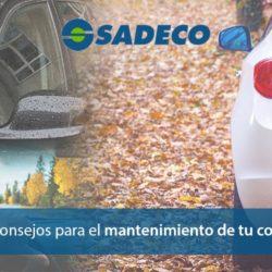 Mantenimiento del coche en otoño